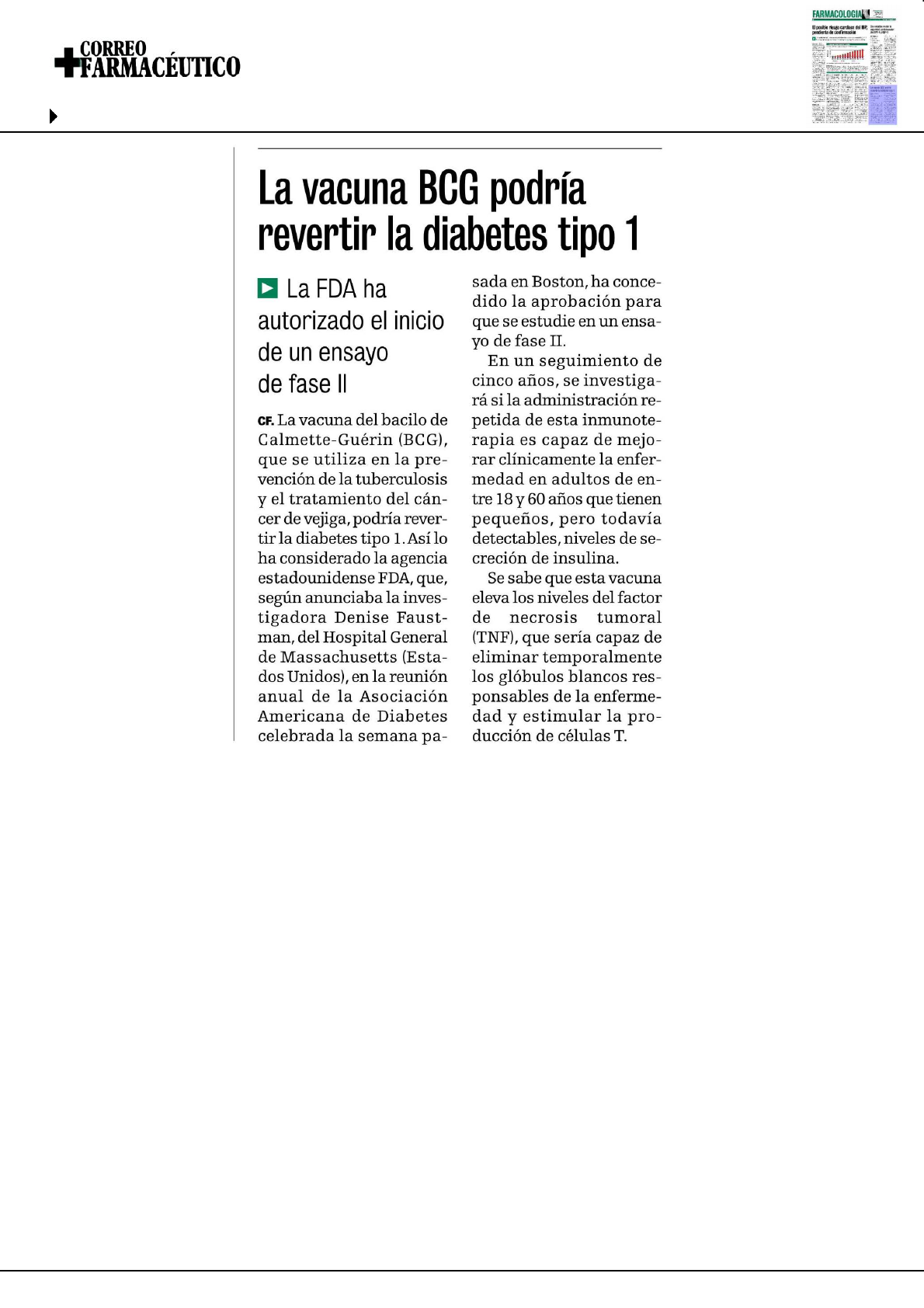 diabetes tipo 1 vacuna bcg y diabetes