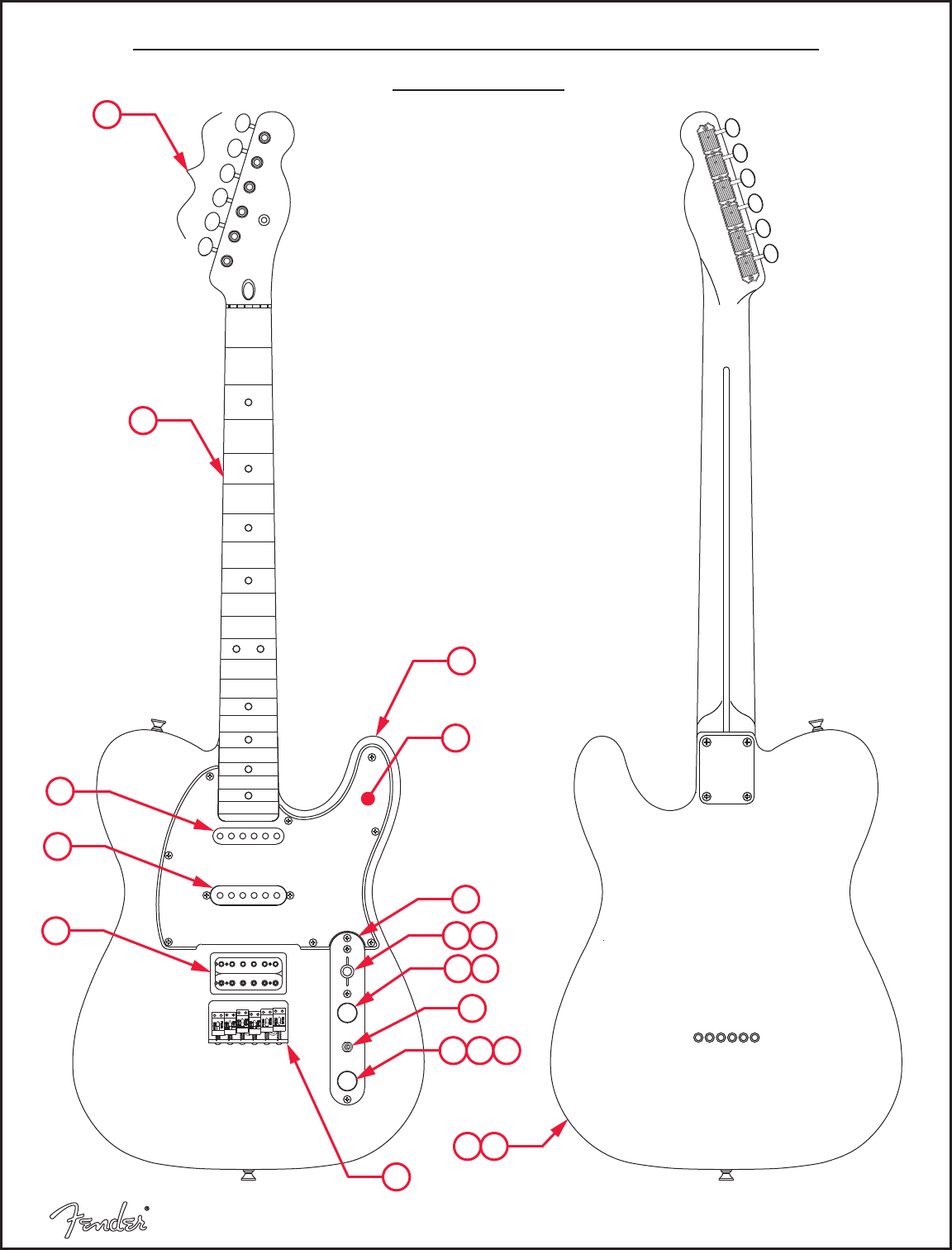 Modern Player Telecaster Wiring Diagram from reader020.staticloud.net